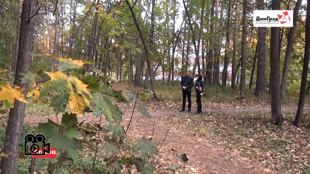В димитровградском парке «Молодежный» планируют организовать «Сказочный лес»